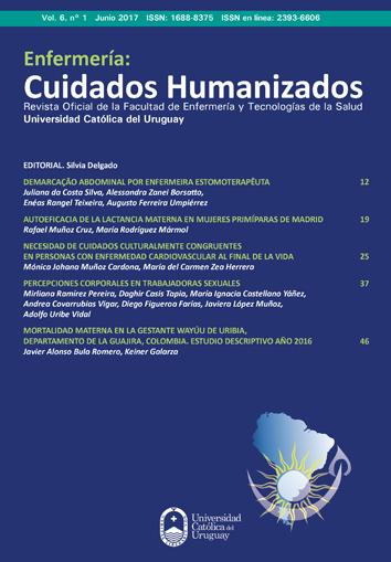 Ver Vol. 6 Núm. 1 (2017): Enfermería: Cuidados Humanizados